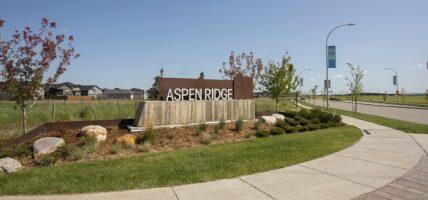 Aspen Ridge Scene